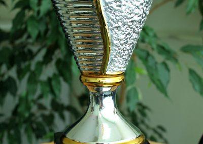 Puchary i trofea